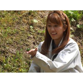 生きもの調査を年2回実施 水田の環境の変化を認識するため「生きもの調査」を実施。 生きものが生息する環境を整え、トキの野生復帰を目指します。