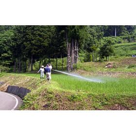 JAS有機栽培米と同様の栽培方法で、化学肥料は使っていません。 同じ地域の通常の米に比べ、約8割の農薬削減を実現した特別栽培米です。