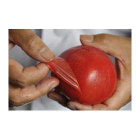 京都三条の千鳥酢を使用したゼリーで包まれ、きらきら輝くトマトのお漬物をつくるのは、二百年を超えた京漬物の老舗出身の職人。
