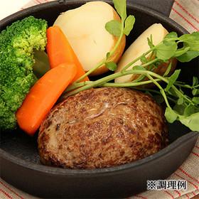 三栄の佐賀牛と佐賀産豚肉の合ミンチ〔500g〕